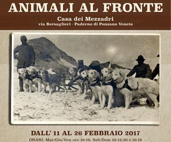 Treviso eventi calendario degli eventi a treviso oggi for Mostre veneto 2017