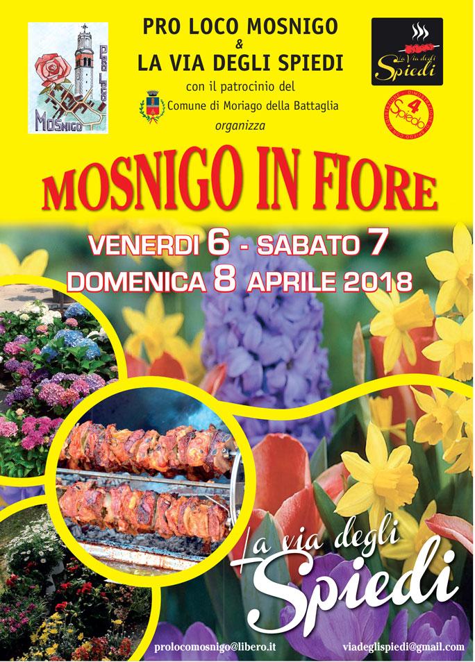 Moriago della battaglia mosnigo in fiore mostra mercato di for Mostre mercato fiori 2017