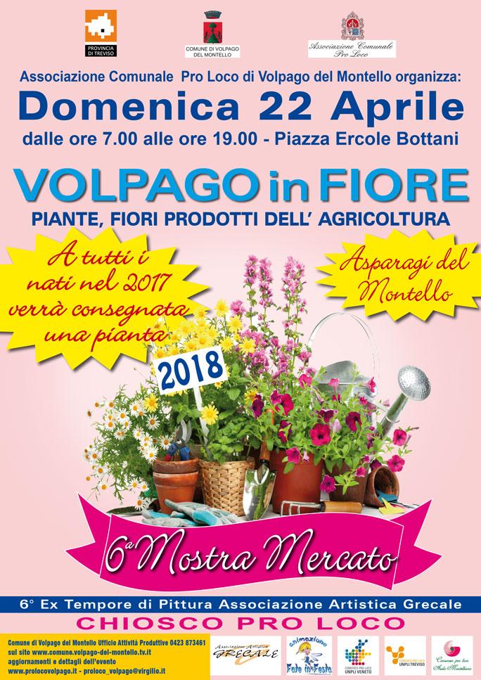 Volpago del montello volpago in fiore mostra mercato di for Mostre mercato fiori 2017